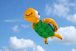 Kite Festivals 2016