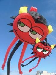 Kite Festivals 2006