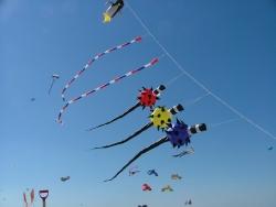 Berck2007-125