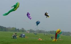 Beverley2005-019