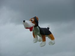 Beverley2007-011