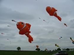 Beverley2007-019