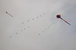 Bristol2008-013
