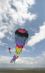 Kite Festivals 2003