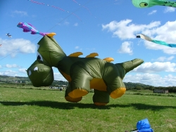 Flookburgh2007-017