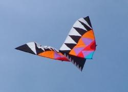 Fylde2004-019