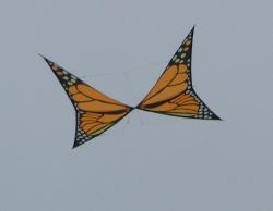 Fylde2005-004