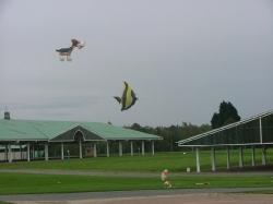 Harrogate2006-015