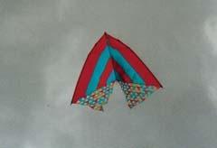 Kite Festivals 2001