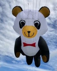 Kite Festivals 2021