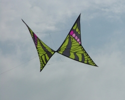 Rufford2007-014