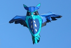 Aldi Owl