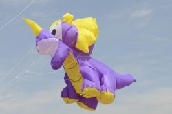 Kite Festivals 2014
