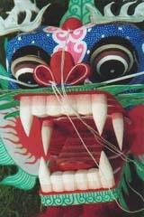 Kite Festivals 2002