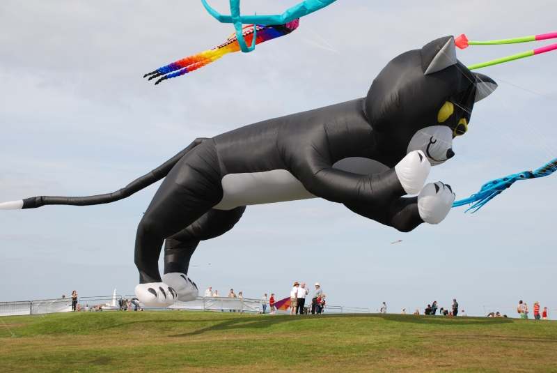 WhitleyBay2009-072