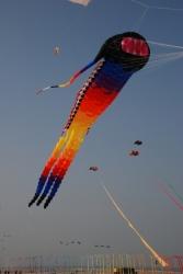 Berck2010-326