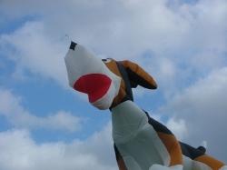 Beverley2006-004