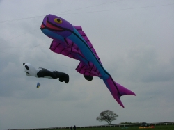 Beverley2006-008