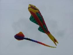 Beverley2006-009