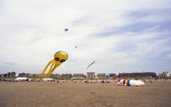 Fylde2002-003
