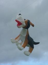 Harrogate2006-009