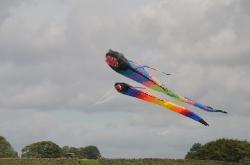 Nidderdale2011-001