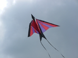 Roundhay2007-005
