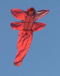 York2006-003